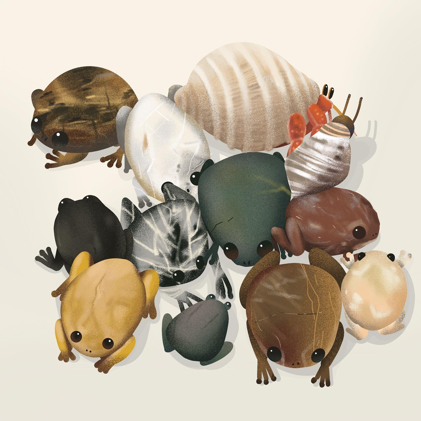 An illustration of frogs based on the colours and shapes of pebbles collected from the beach.