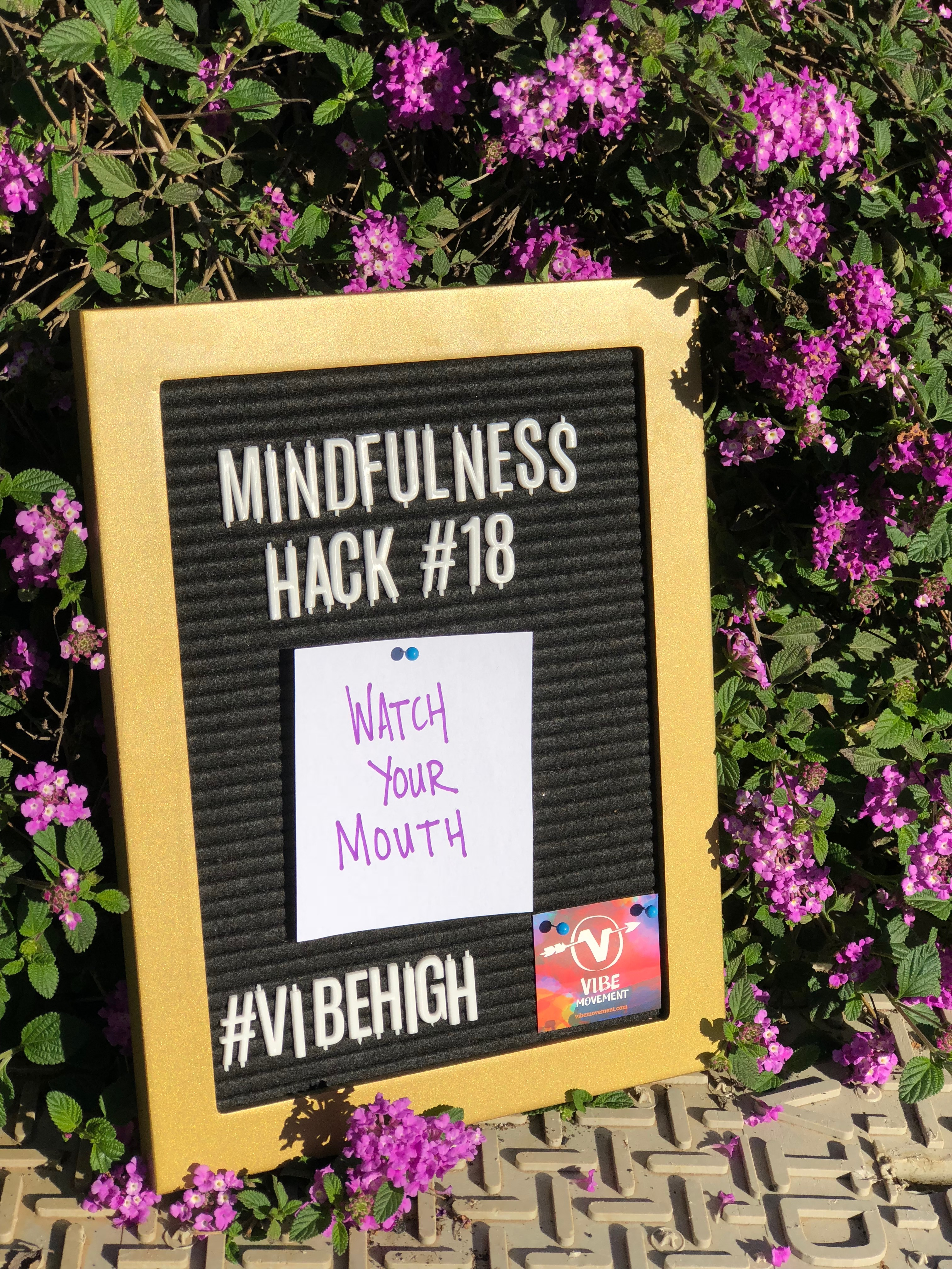 Mindfulness Hack #18: Watch Your Mouth