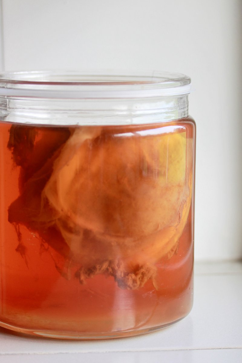 jar of kombucha