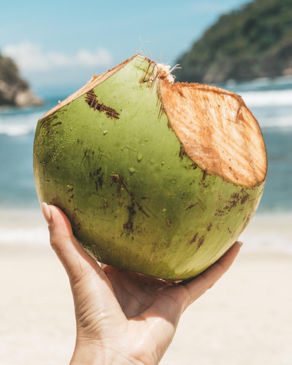 person holding green coconut fruit