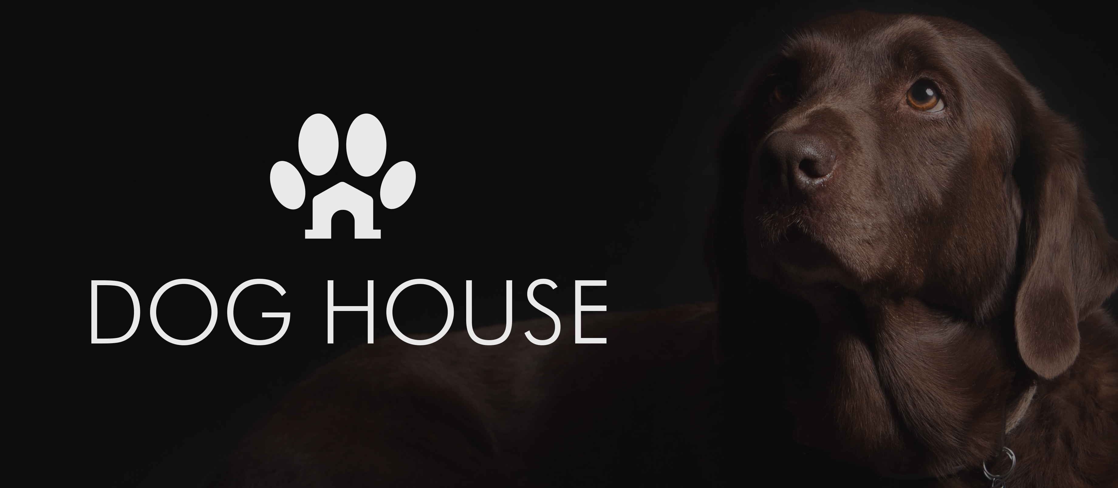Dog house food packaging for dogs