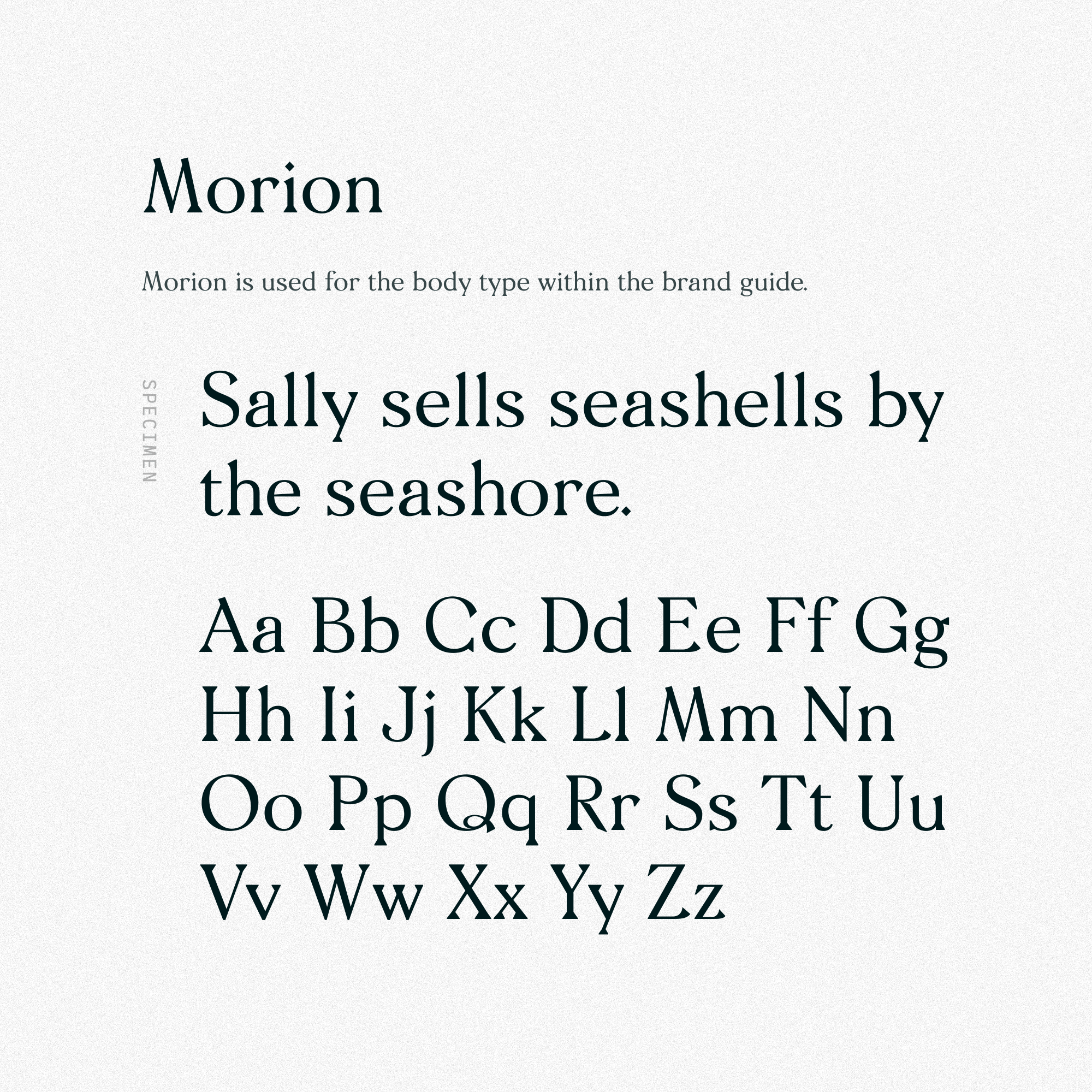 Morion by Designer Foundry.