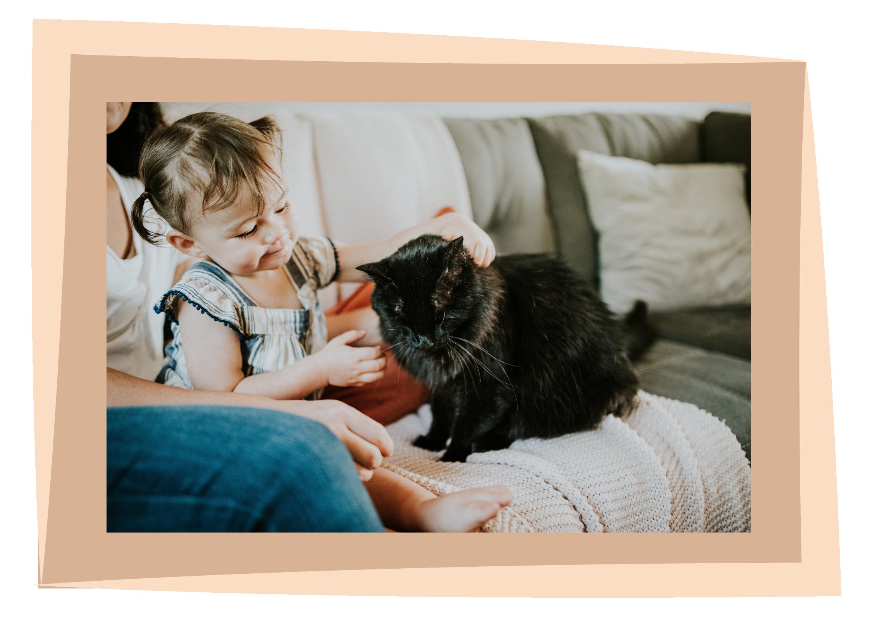 Children's Pet Guide