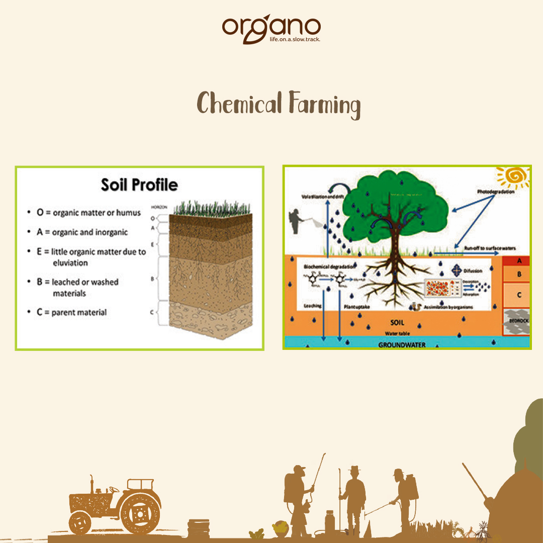 chemical farming