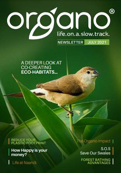 Organo Newsletter