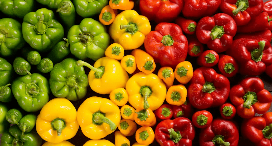 This colorful Costa vida spot features stop motion footage with different colorful vegetables.
