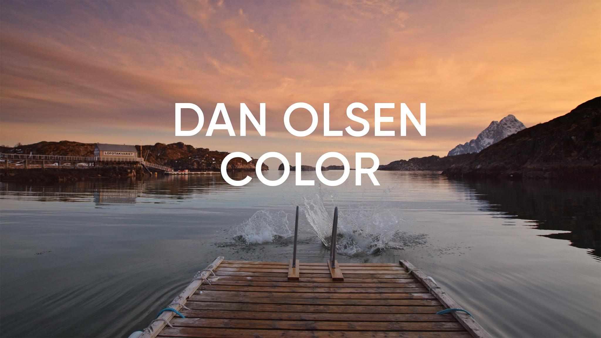 """Thumbnail for """"Dan Olsen - Color"""""""
