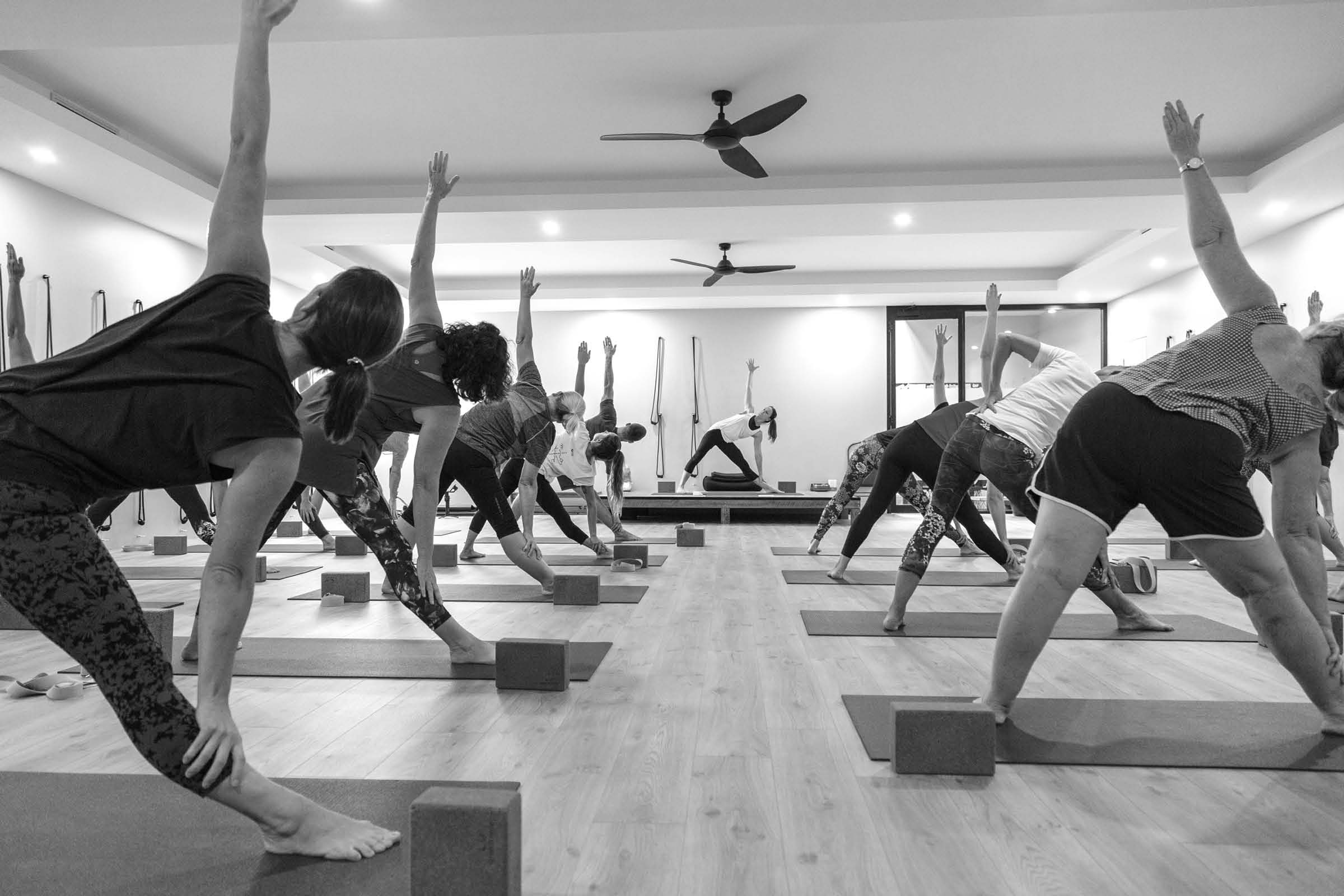 A room of yoga students participating in a class
