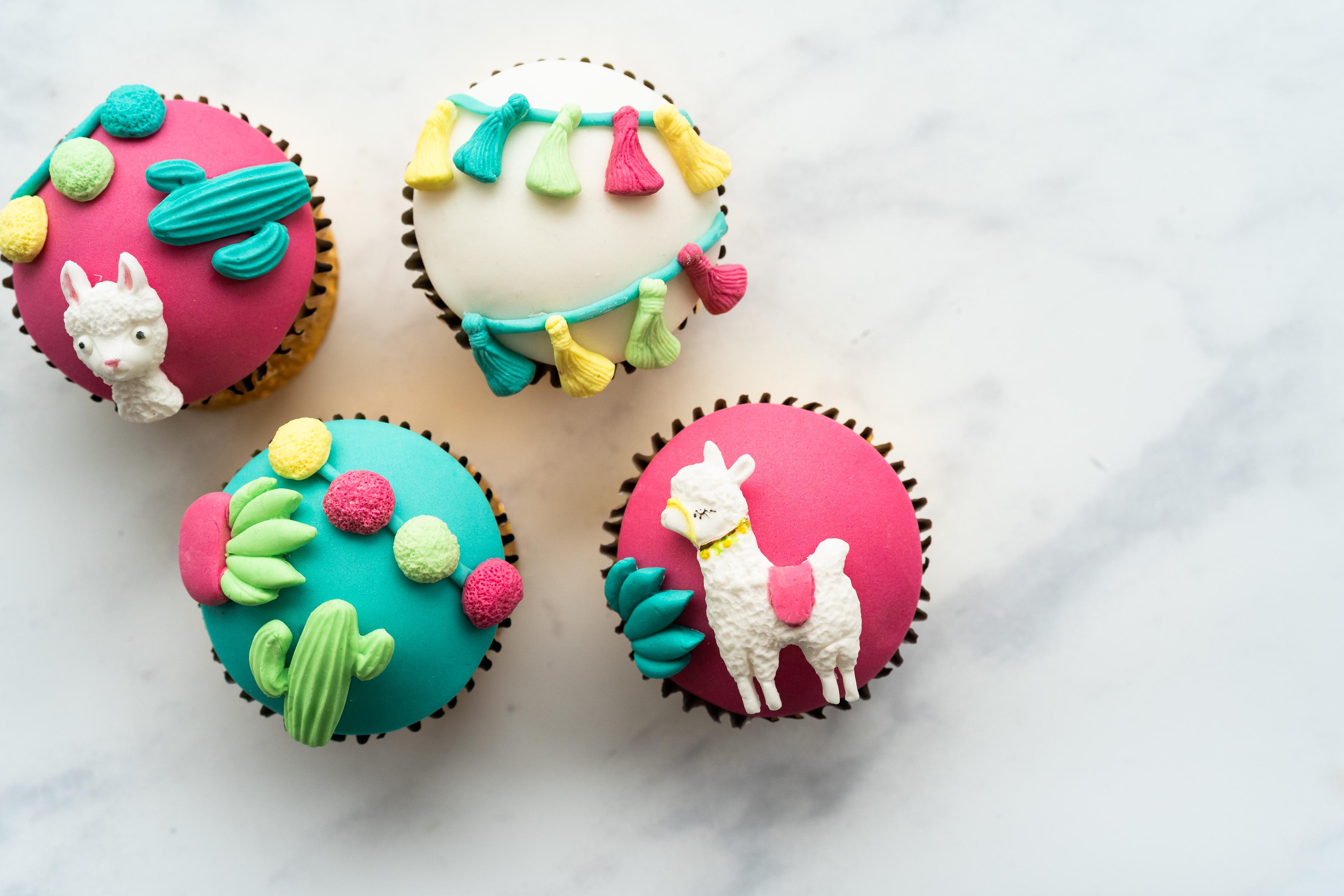 Llama Drama Cupcake Kit
