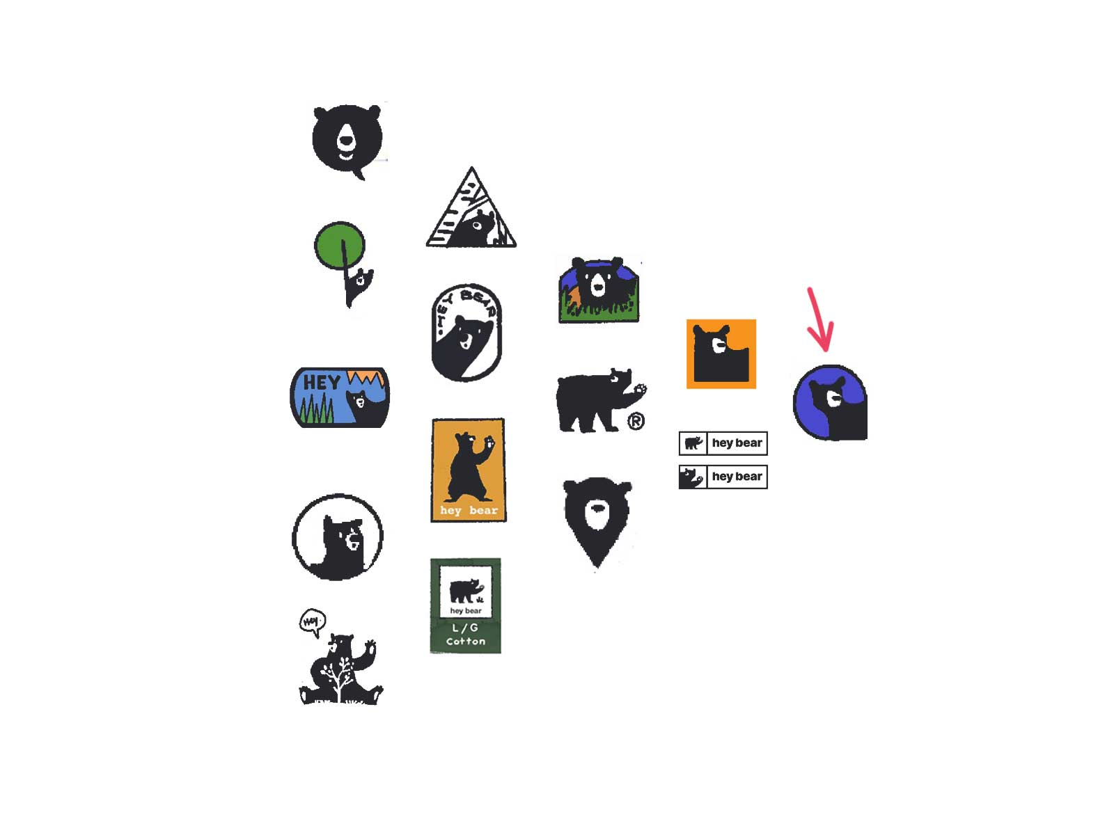 narrowing down the logo design for hey bear logo design project