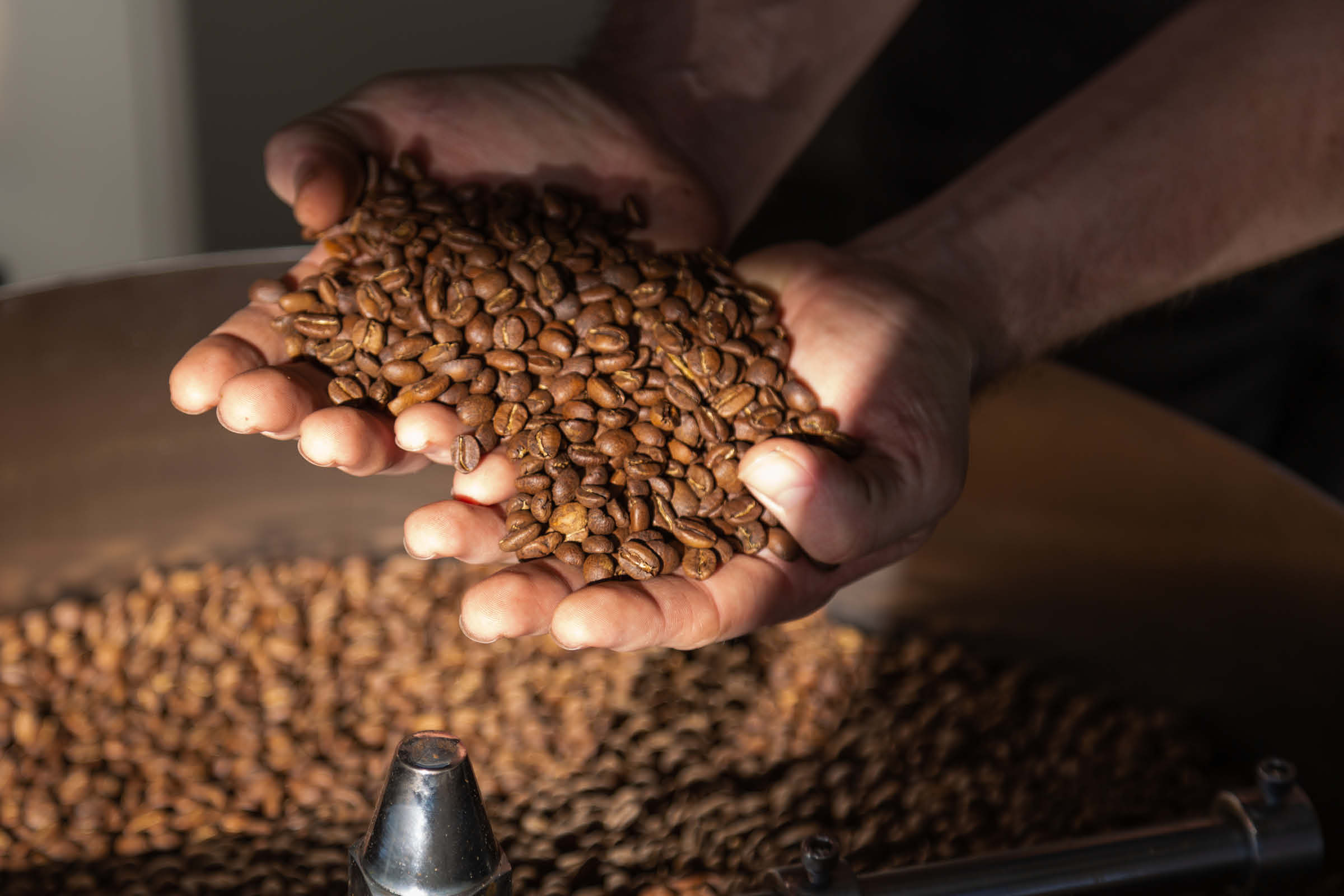 supporting the brand with a photo of hands holding the freshly roasted coffee before it is packaged