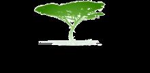 Zambian Governance Foundation Logo
