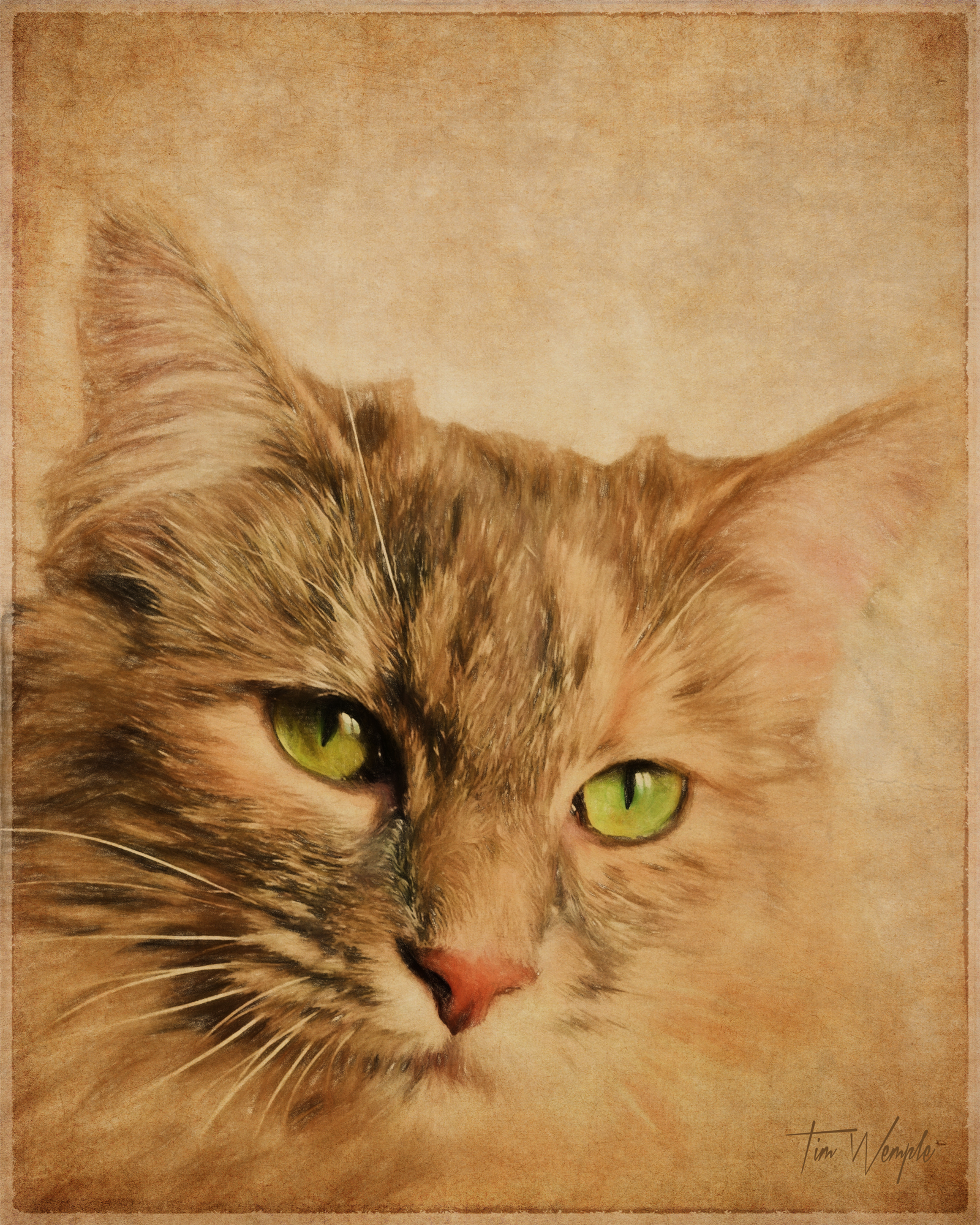 Pet Portrait Digital Color Pencil Style