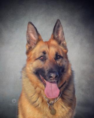 Andy's Paw Prints Pet Portrait