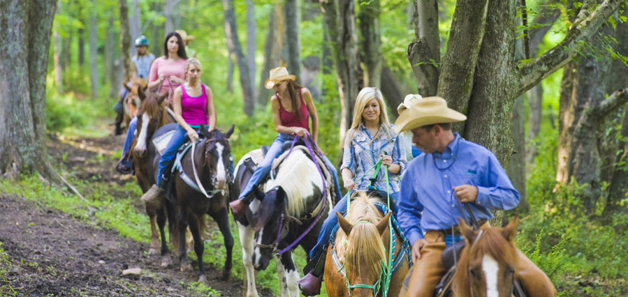 Guided Trails for Horseback Riding