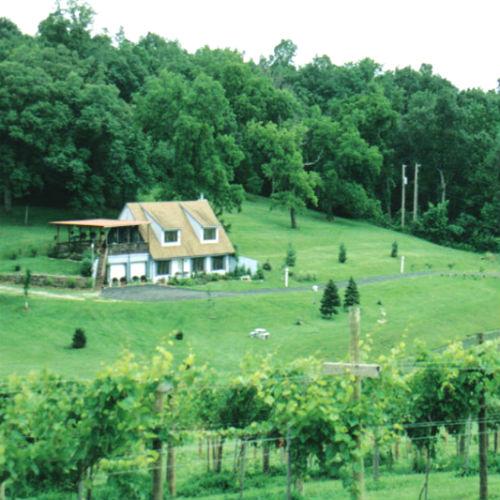Albonee Country Inn & Vineyards