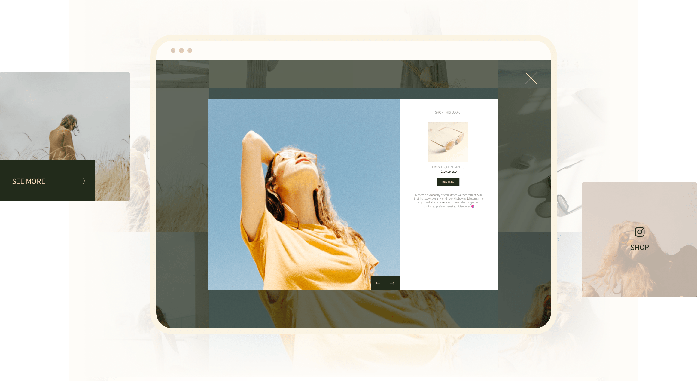 Hover and popup style 3