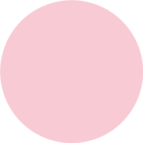 A circle with multiple colored segments