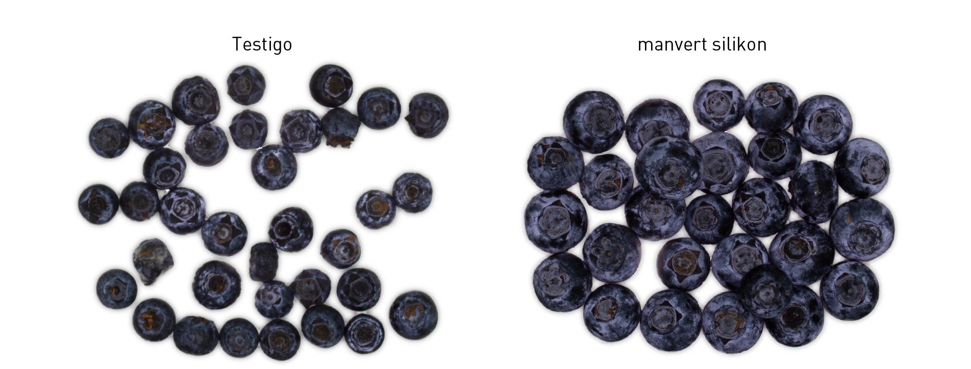 aumento producción uva manvert foliplus