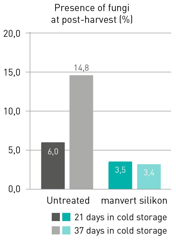 retorno inversión trigo