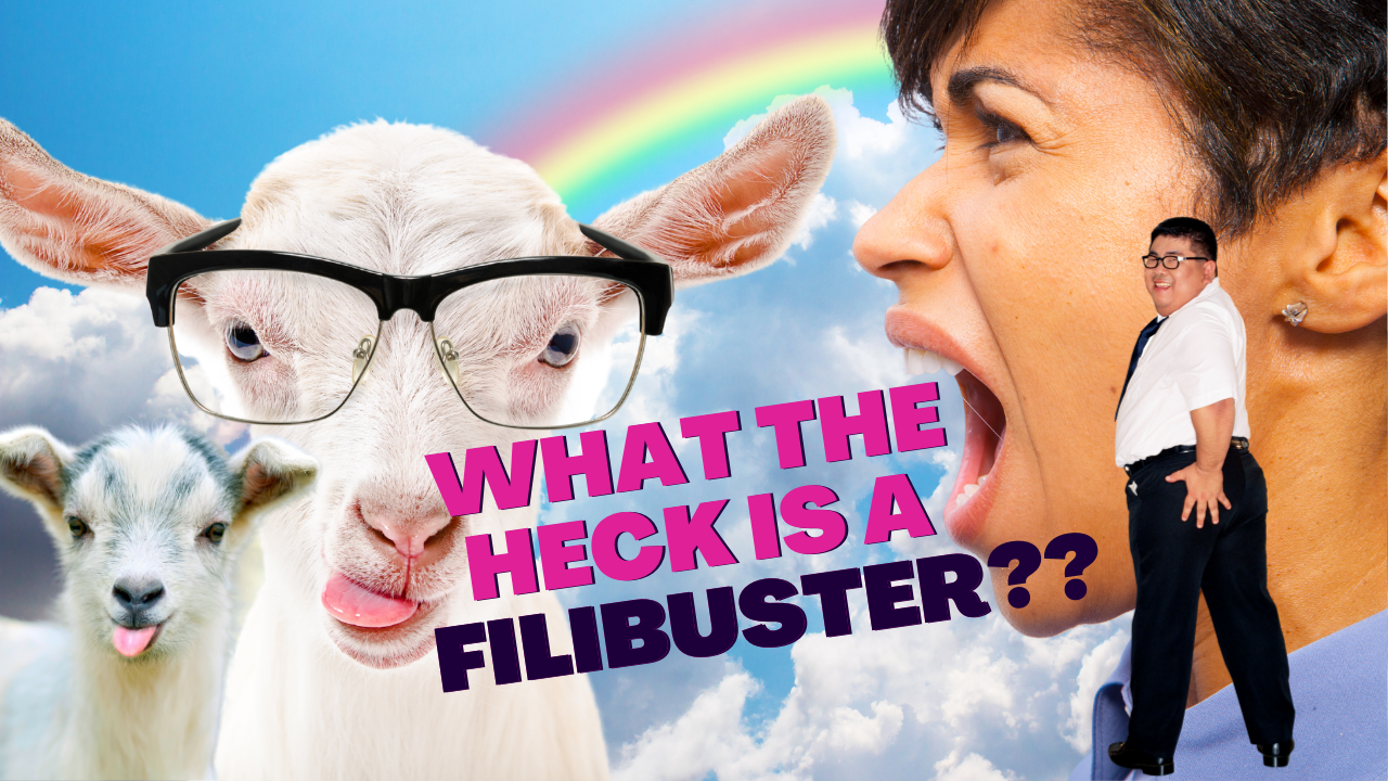 What The Heck Is A Filibuster