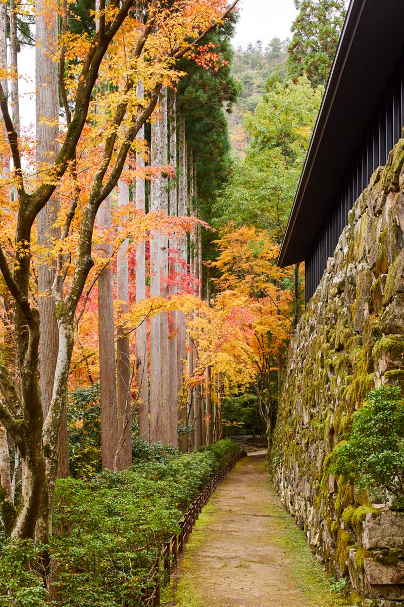 Aman Kyoto forest