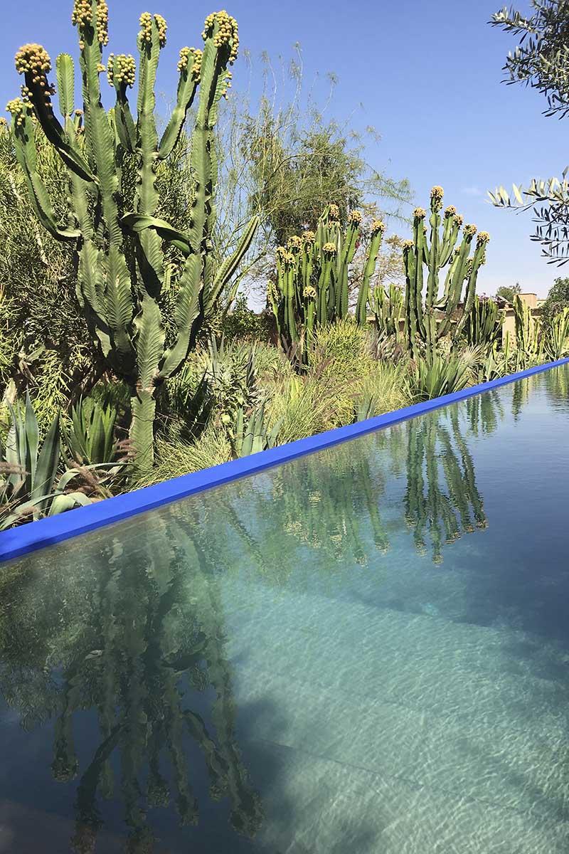 The Majorelle blue swimming pool at Dar Zahia's garden