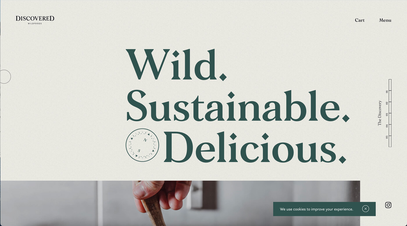 Website Screenshot Discover Foods