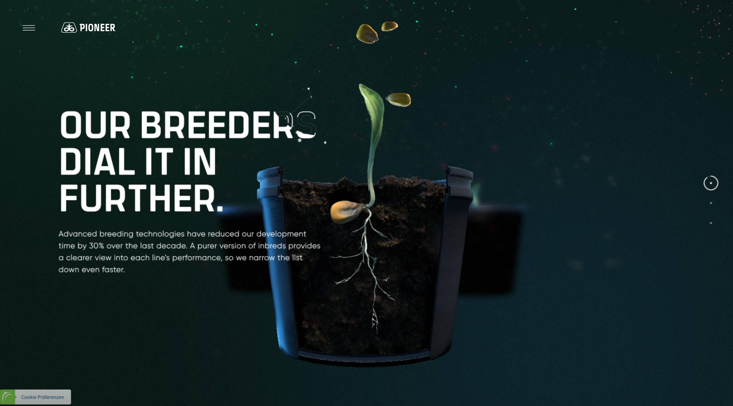 Website Screenshot Pioneer