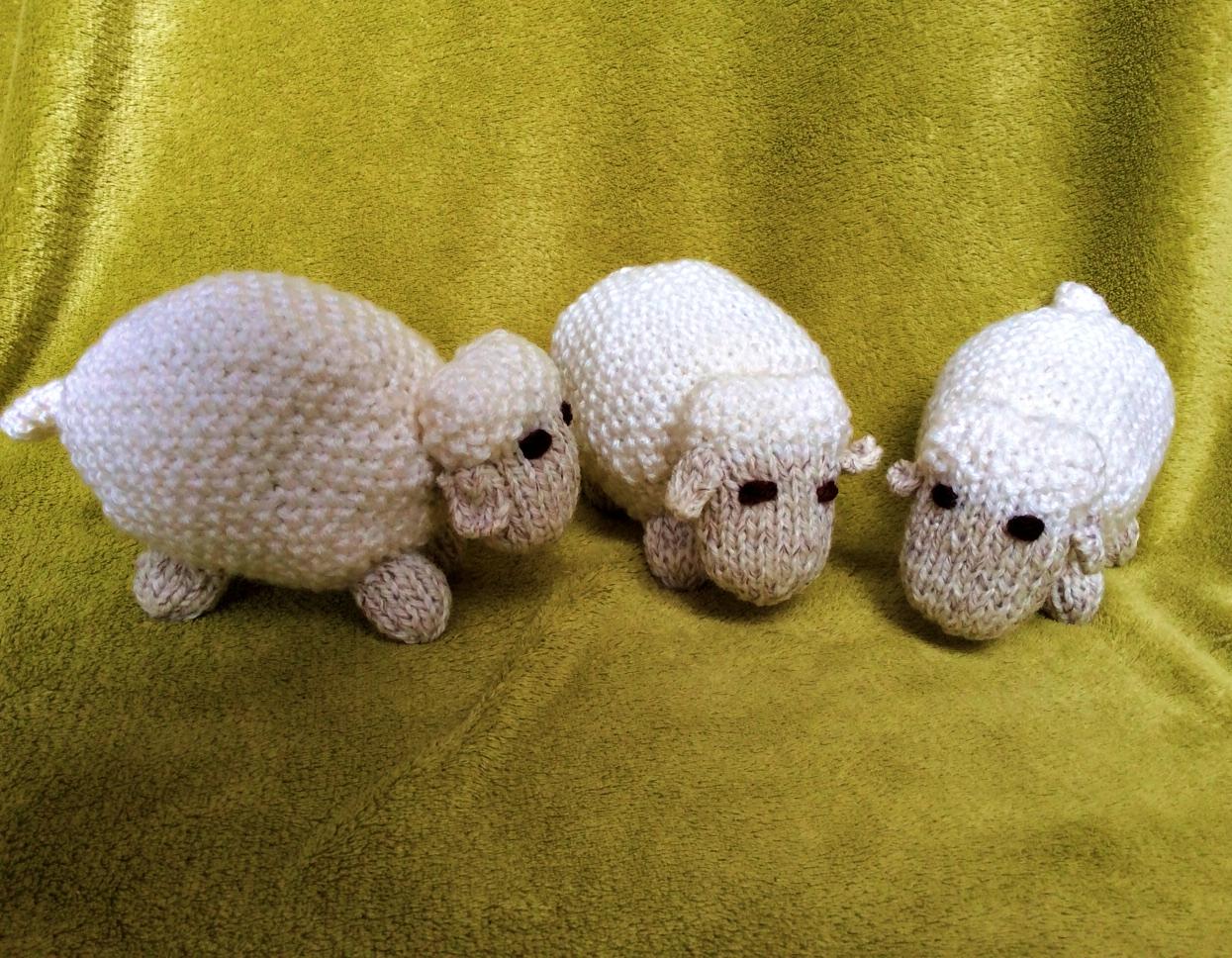 A flock of woolly sheep....baaaaaah