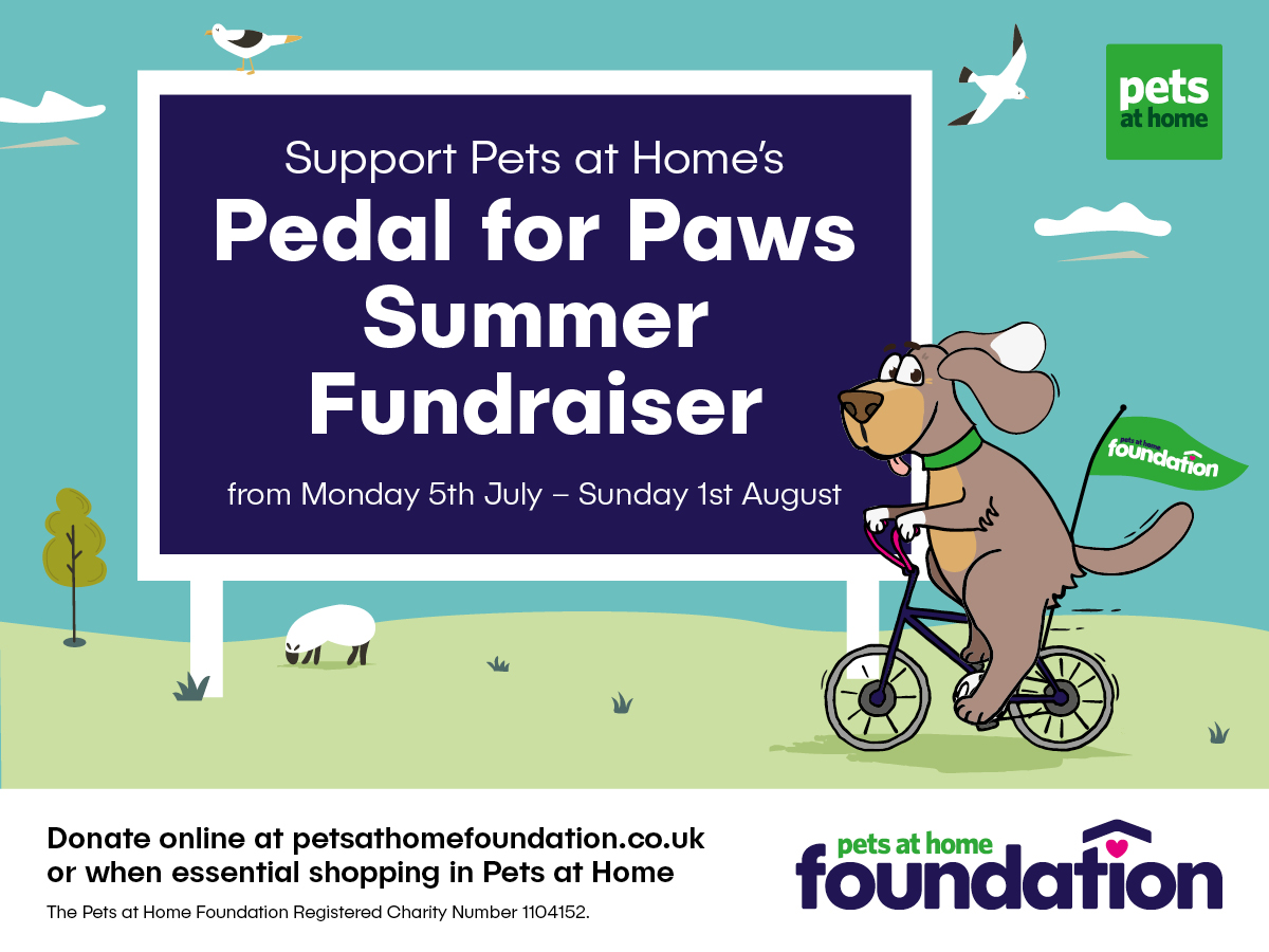 Summer Fundraising Event Pedal for Paws