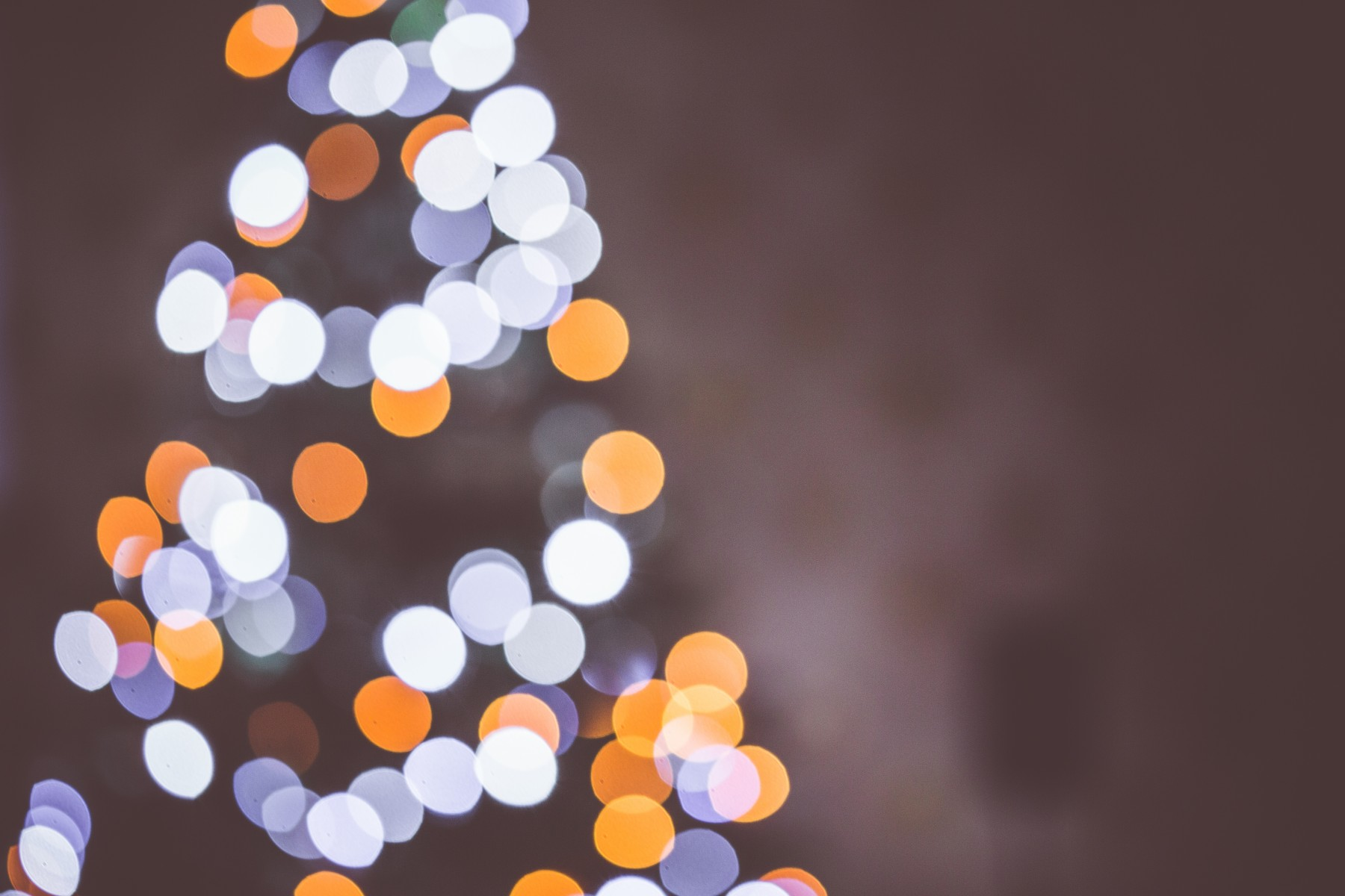 Merry Christmas from all of us at WebDepend