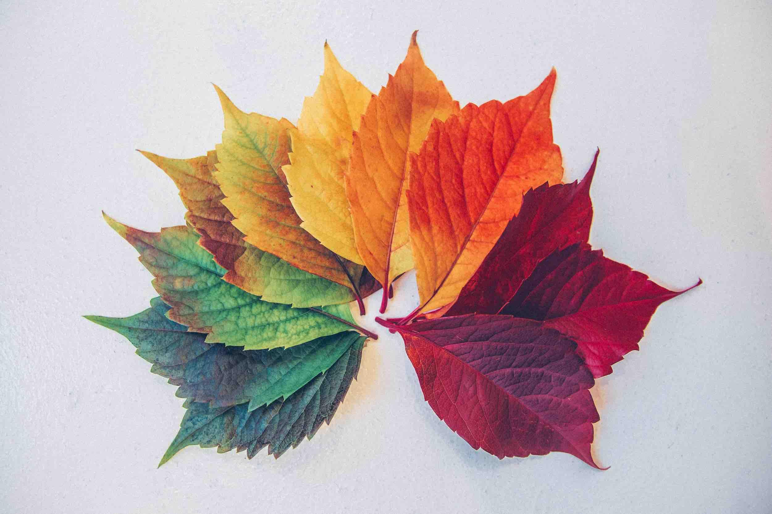 In Defense of Seasons