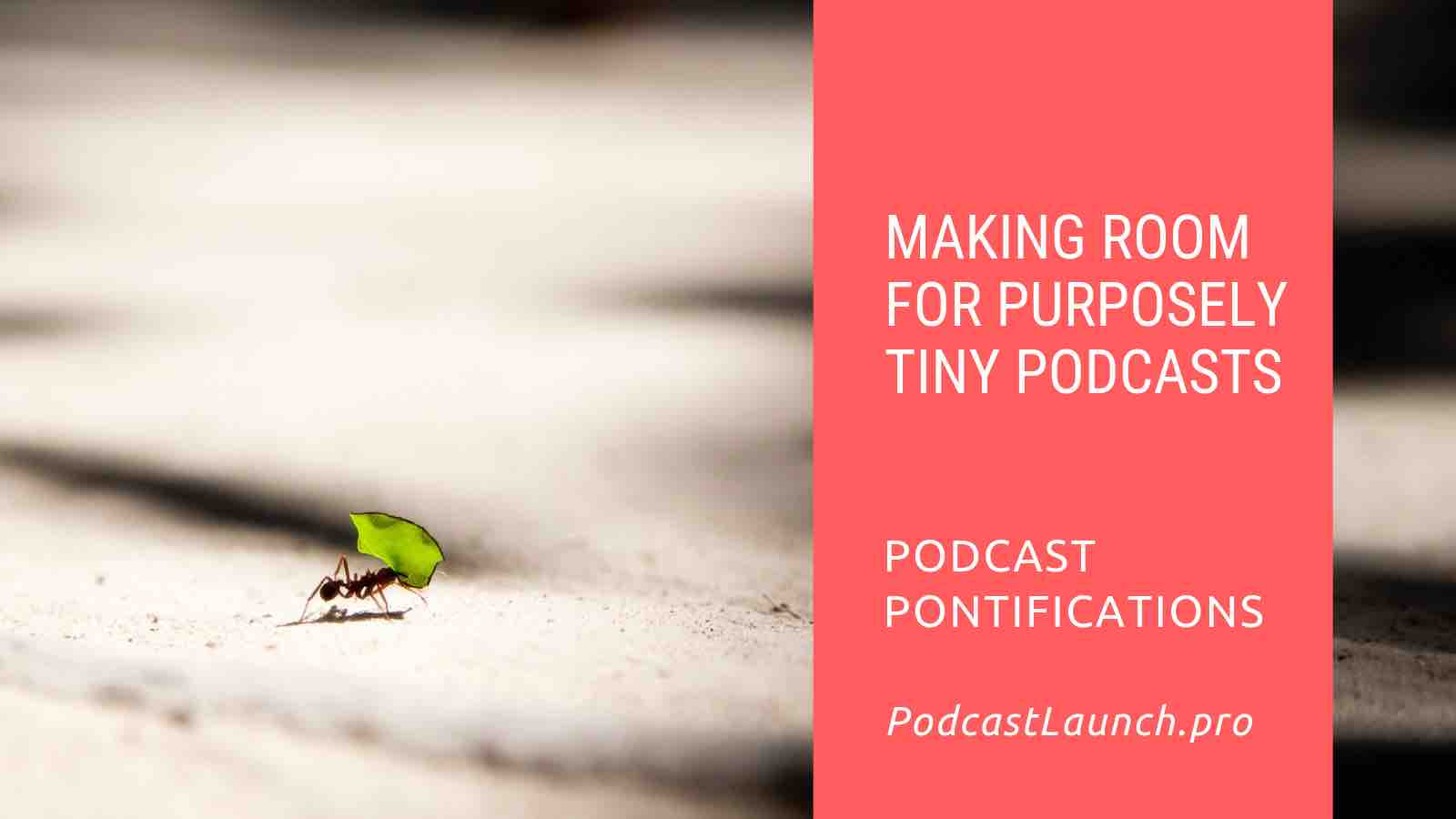 Making Room For Purposely Tiny Podcasts