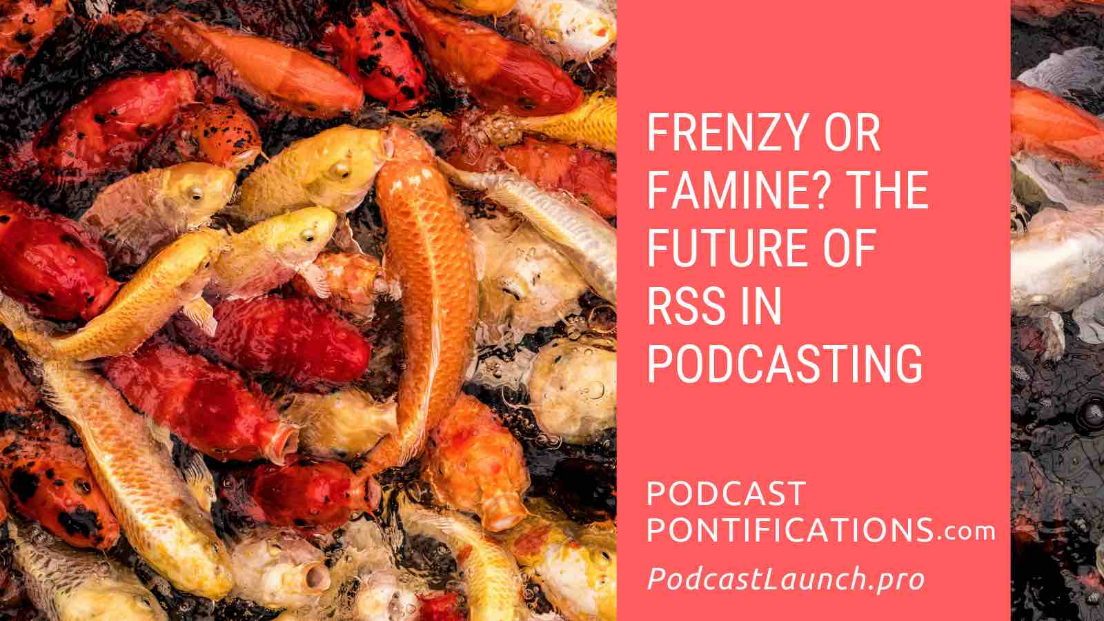 Frenzy or Famine: The Future of RSS in Podcasting