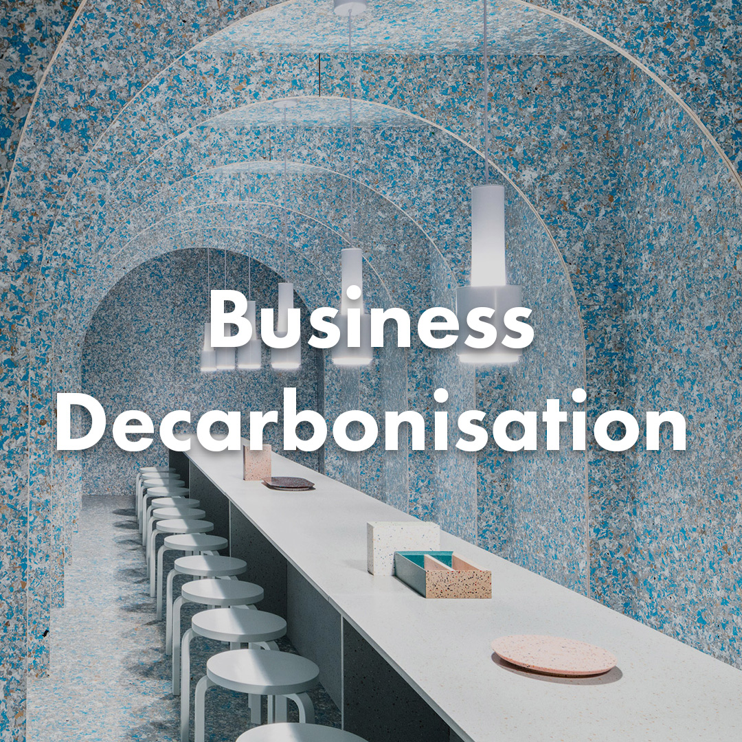 Business Decarbonisation