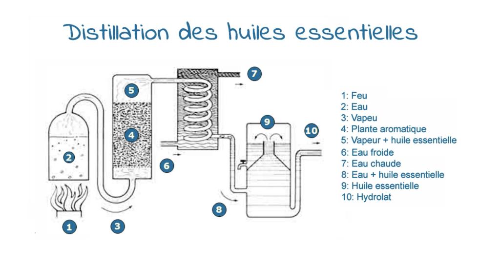 Graphique explicant le système de distillation des huiles essentielles