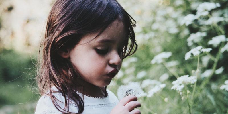 Petite fille soufflant sur un pissenlit