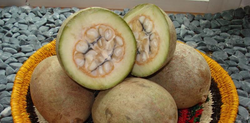 Fruit du jagua