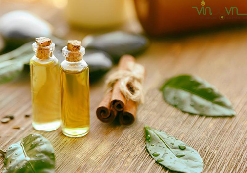 Dùng dầu lá trà chữa trị mụn nước ngứa