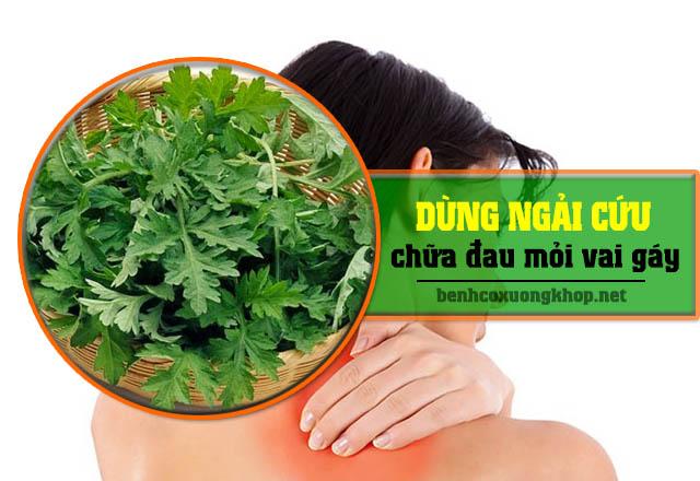 Cách sử dụng lá ngải cứu cải thiện đau vai gáy