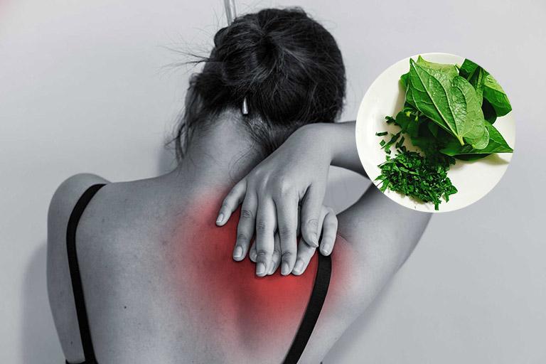 Cách chữa đau vai gáy tại nhà bằng lá lốt