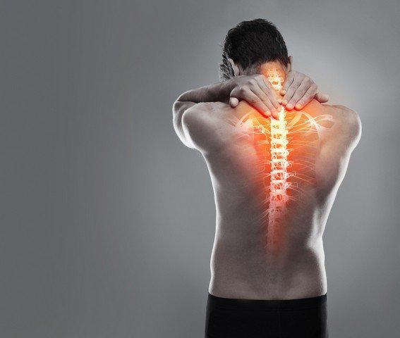 Dùng ngải cứu chữa đau lưng
