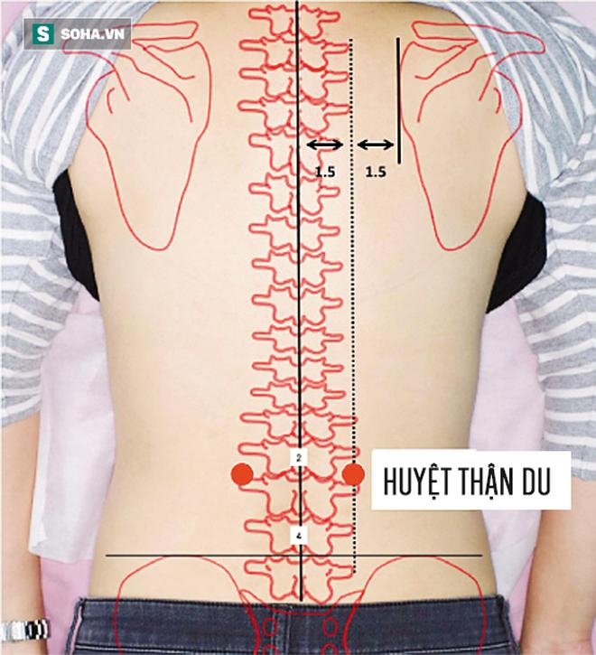 bấm Huyệt Thận du trị đau lưng