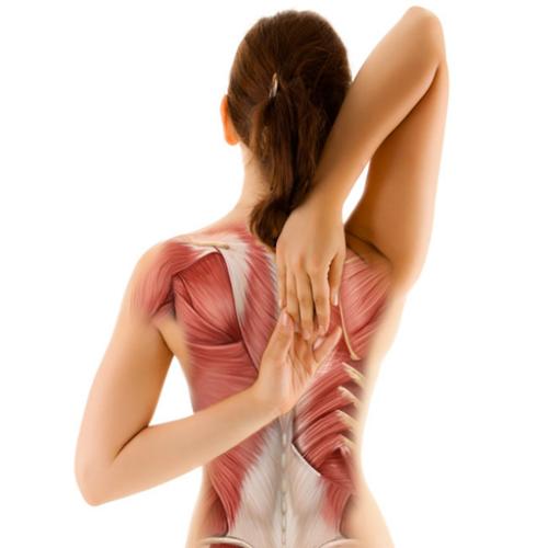 Đau sau lưng ở tại vùng phổi có hiểm nguy không