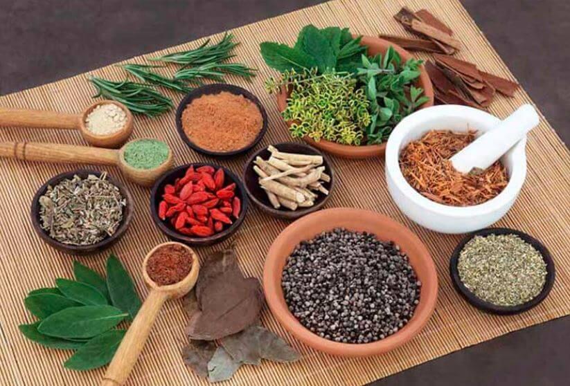 Bài thuốc Thanh dinh thang trị viêm da cơ địa
