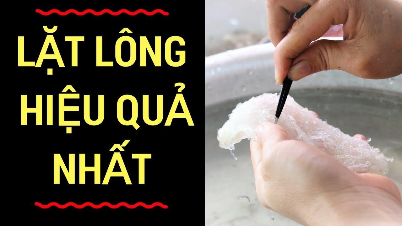 Cách nhặt sạch lông yến nhanh nhất: