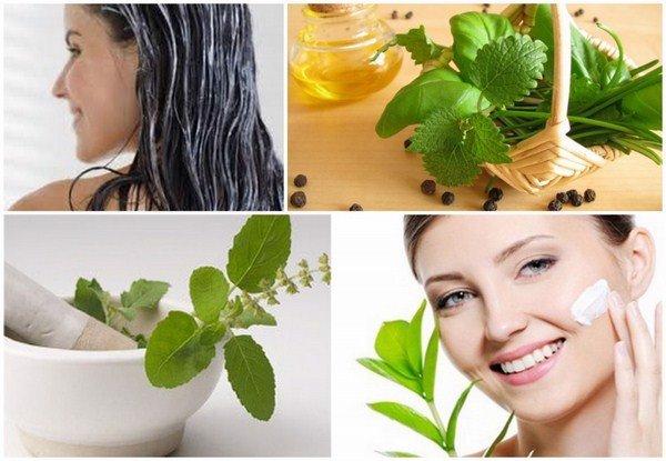 Cách sử dụng tinh dầu hương nhu