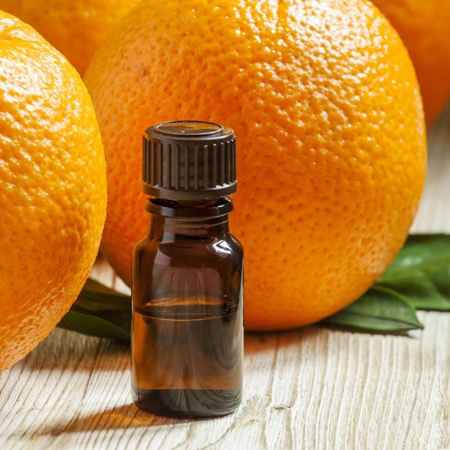 Tinh dầu cam mua ở đâu