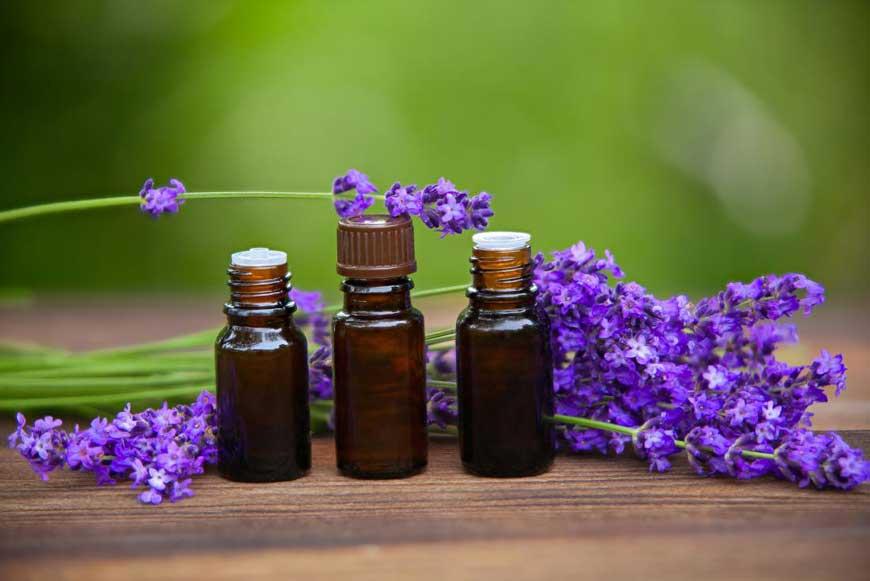 tinh dầu oải hương lavender có tác dụng gì